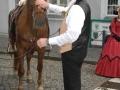 2011-06-24-hochzeit-von-heike-und-tom_004