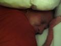 2012-04-13-florida_01