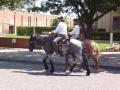 2012-04-18-texas_09