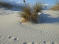 2012-04-23-new-mexico-arizona_70