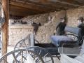 2012-04-25-arizona_35