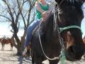 2012-04-26-arizona_07