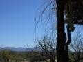 2012-04-27-arizona_06