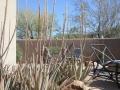 2012-04-28-arizona_04