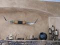 2012-04-28-arizona_12