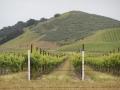 2012-05-01-california_11