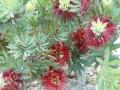 2012-05-01-california_18