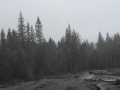 2012-05-04-washington-montana_13