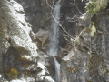 2012-05-04-washington-montana_20