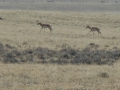 2012-05-07-wyoming-south-dakota_03