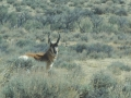 2012-05-07-wyoming-south-dakota_04