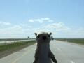 2012-05-08-south-dakota-nebraska-wyoming-nebraska_64