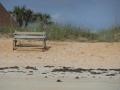 2012-05-17-florida_06
