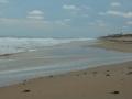 2012-05-17-florida_19