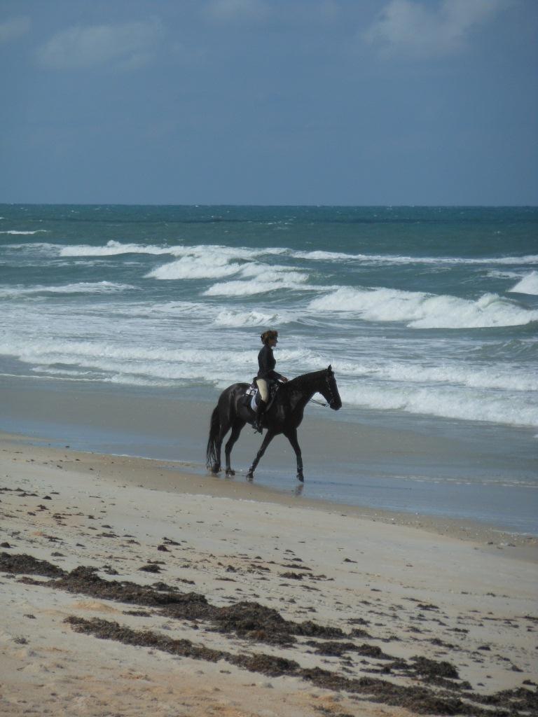2012-05-18-florida_11