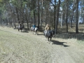 2013-04-07-sunday-trail_11