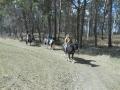 2013-04-07-sunday-trail_11
