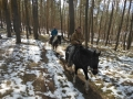 2013-04-07-sunday-trail_12