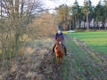 2013-12-31-new-years-eve-trail-with-steffi_01