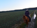 2014-01-01-new-years-trail-with-steffi_23