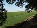 2011-05-08-nth-ranch-pastures_01