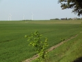2011-05-08-nth-ranch-pastures_02