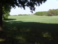 2011-05-08-nth-ranch-pastures_03