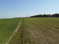 2011-05-09-nth-ranch-pastures_01