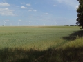 2011-06-13-nth-ranch-pastures_01
