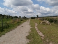 2012-07-16-nth-ranch-pastures_01