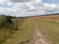 2012-07-16-nth-ranch-pastures_02