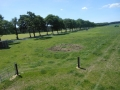 2013-06-05-nth-ranch-pastures_03