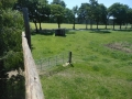 2013-06-05-nth-ranch-pastures_05