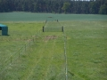 2013-06-05-nth-ranch-pastures_06